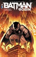 Batman et Robin3