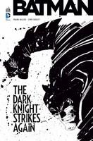 Batman : Dark Knight Strikes again