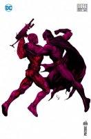 Suicide Squad Rebirth 5 Variant Cover