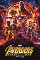 Marvel Cinematic Universe - Avengers - Infinity War