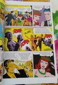 Le lundi c'est librairie ! Batman Arkham Poison Ivy